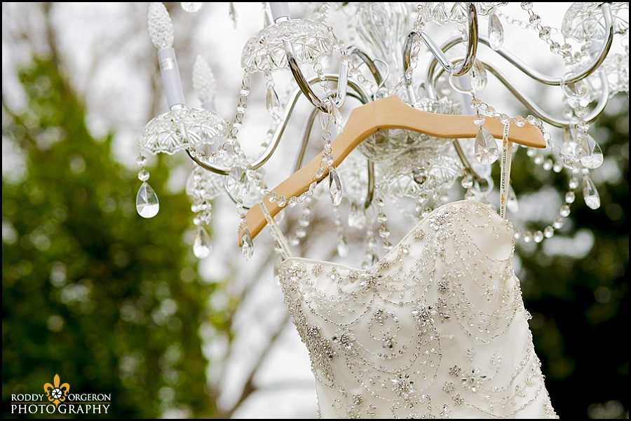 Brides dress hanging in tree
