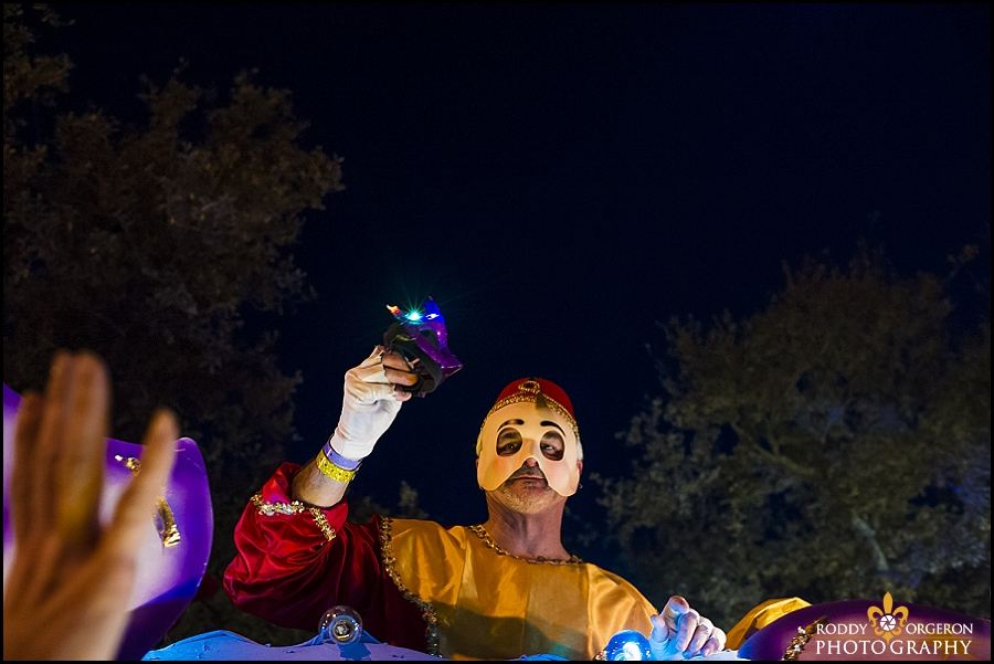 Endymion 2014 - New Orleans photographers