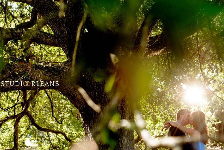 Engagement Session in City Park by the beautiful Oak trees in the background and sun flare